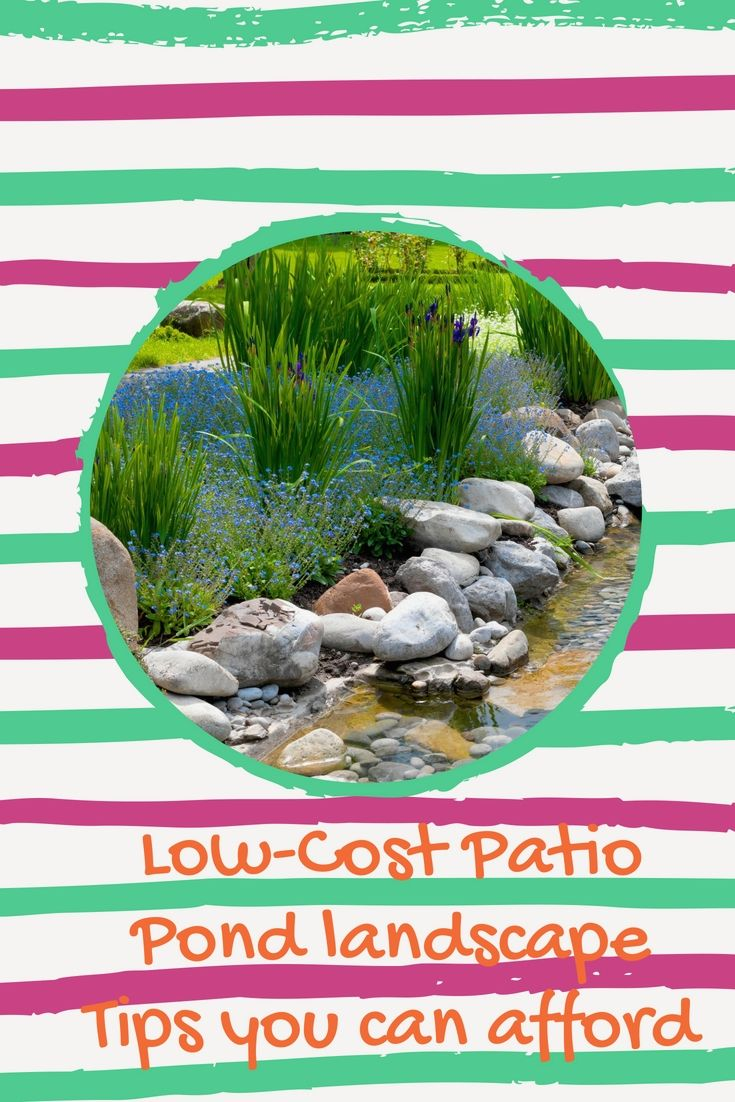 amazingly wonderful and easy care pond landscaping ideas ponds