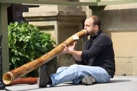 Image result for didgeridoo facts