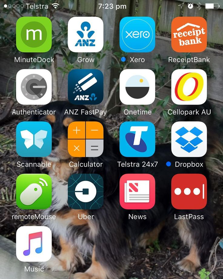 These are the business apps on my iPhone  Share yours and tag me @heathersmithau so I can see. Ask me any questions you may have about the apps I use @Xero @MinuteDock @receipt_bank @dropbox @lastpassteam @anz_au @kogmarketing for the idea #Xero  #xerocon  #cloud  #cloudtechnology  #CloudBusiness  #automation #Accounting  #Bookkeeping  #startuplife  #entrepreneurs  #focused  #simplify  #taskmanagement  #organized #todolist  #workfromhome  #makeithappen  #empower #productivity  #seizetheday