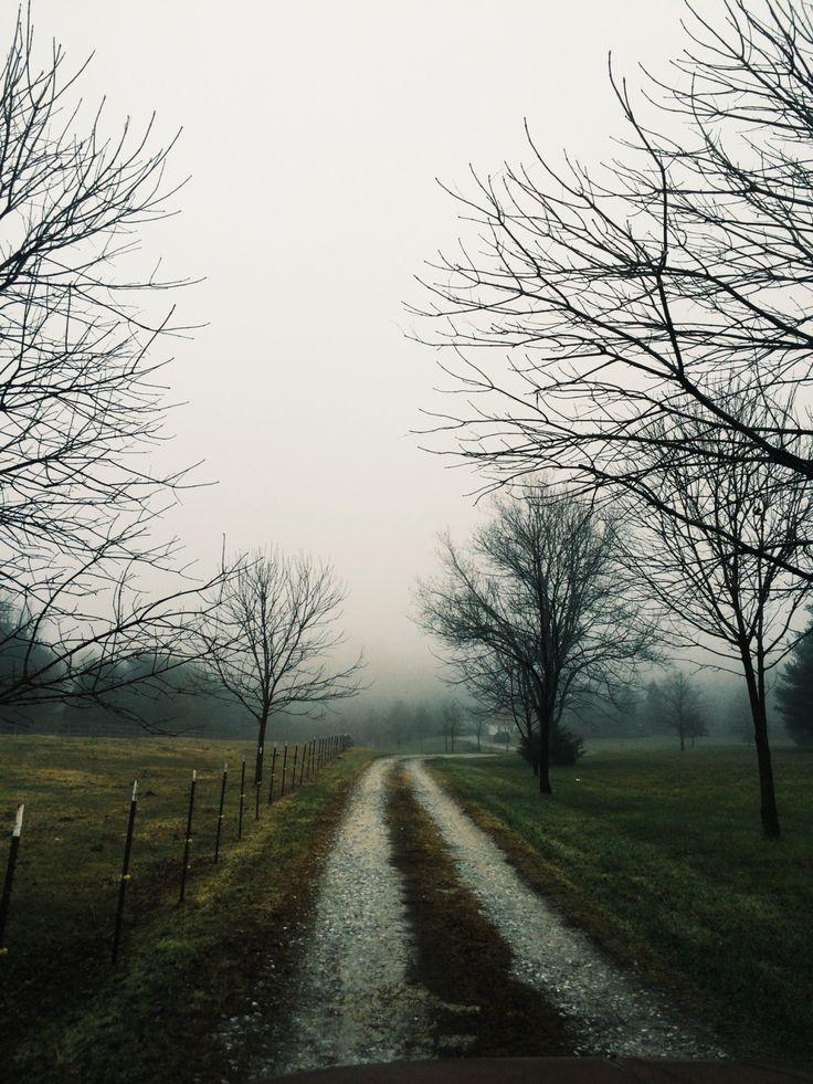 A Nature Blog : Photo