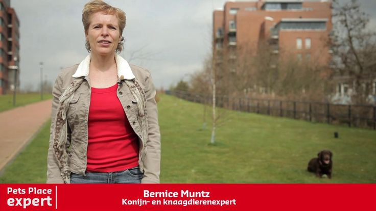Pets Place dierenexpert Bernice Muntz