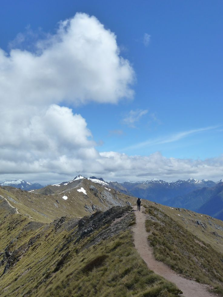 On New Zealand's Kepler Track in the Kepler Mountains, Fiordland National Park. Want to know more? Then read our blog and get inspired!