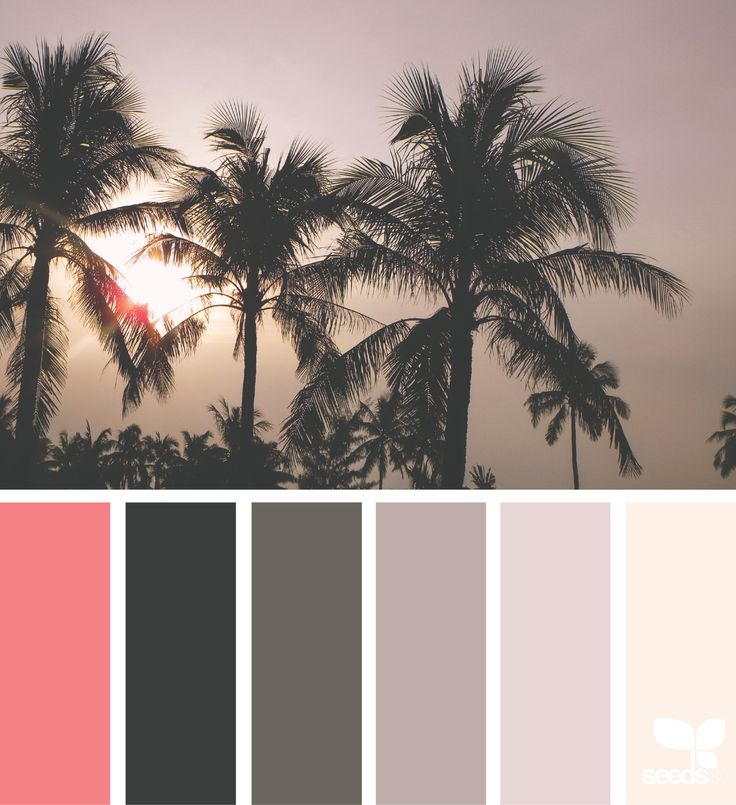 Tropical Tones