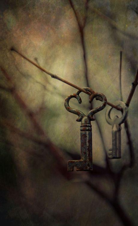 Vintage keys handing on twigs, moody photo