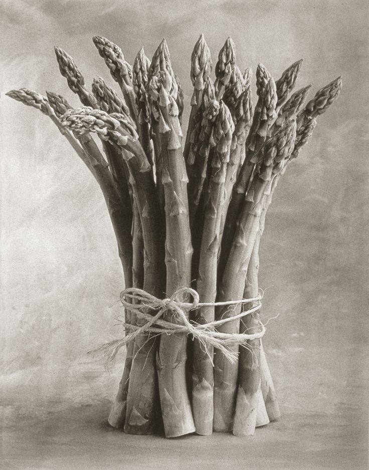 Asparagus ©Cy DeCosse Fine Art Photography. The Beauty of Food Collection. Limited edition platinum-palladium print. CyDeCosse.com #photography #art #food