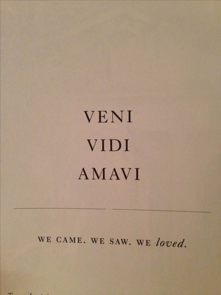 Veni  Vidi  Amavi  ~~~ We Came  We Saw  We Loved