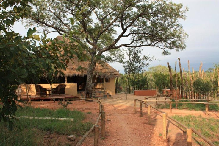 Tydon Safari Camp in Sabi Sand Reserve which forms part of the Greater Kruger region due to having unfenced borders with the Kruger Park, Tydon Safari Camp offers guests a unique opportunity of staying in permanent semi luxury tented rooms and experiencing wildlife game drives and bush walks.
