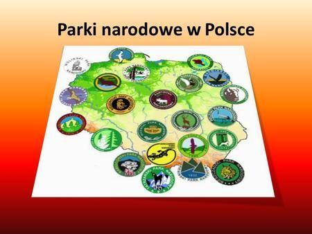 Parki narodowe w Polsce. Babiogórski Park Narodowy Utworzony 30 października 1954 r. Znajduje się on w Polsce południowej, w powiecie suskim i nowotarskim.