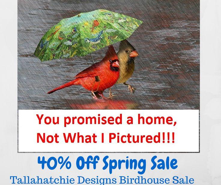 68 Best Collegiate Birdhouses Images On Pinterest Bird