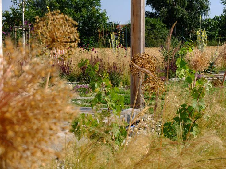 Augustín,Horáková / súkromná záhrada / private garden / Čuňovo