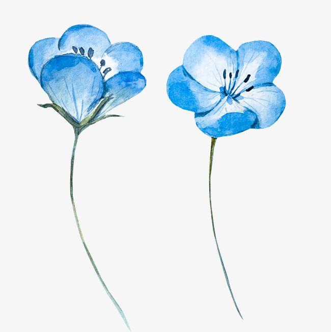 Light Blue Watercolor Flowers Watercolor Flower Light Blue Png