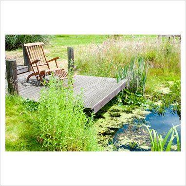 Timber jetty overlooking wildlife pond