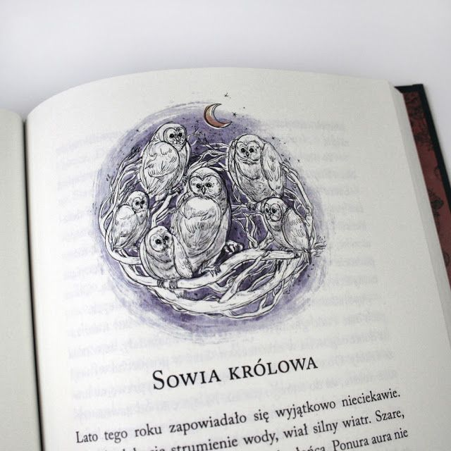 Wojciechowska Dorota illustration
