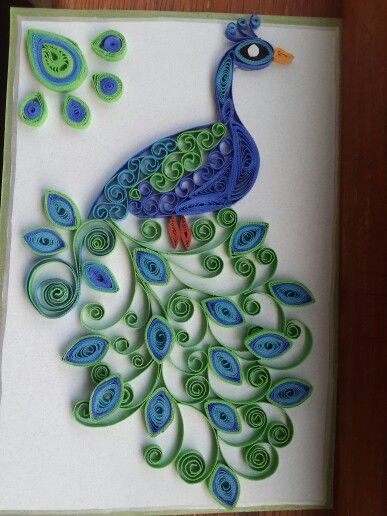 Peacock using beautiful colours... quilled with a lot of love