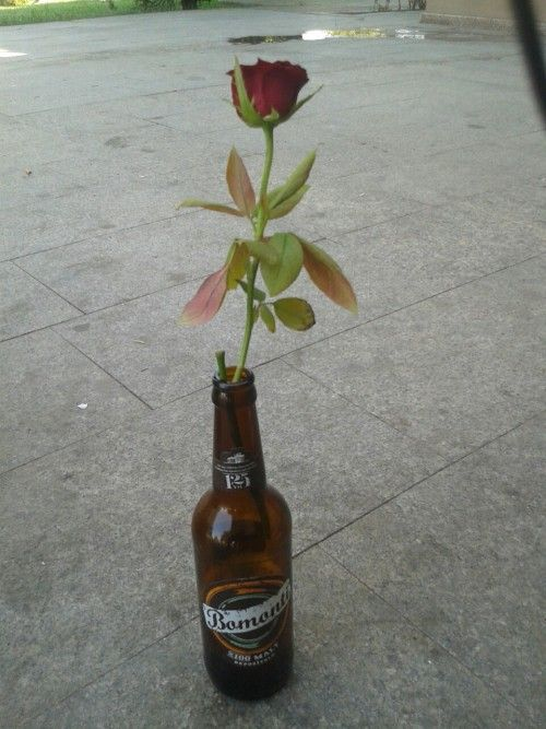 En güzel çiçekler bataklıkta yetişir...