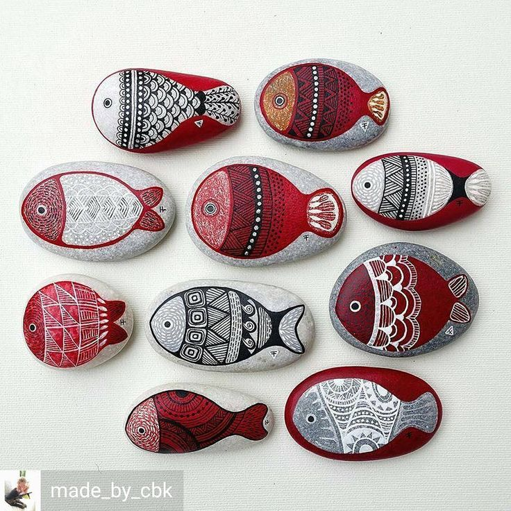 @Regrann from @made_by_cbk - School of fish - hand painted on stone by…