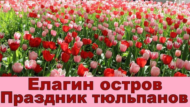 Праздник тюльпанов. Елагин остров.