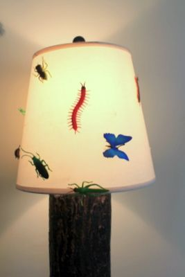 59 best images about home decor on pinterest furniture for Bug themed bedroom ideas