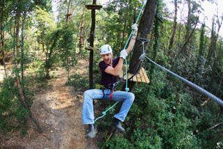 Tree Top Adventure and Zip-Trek, Dandenong Ranges VIC | RedBalloon