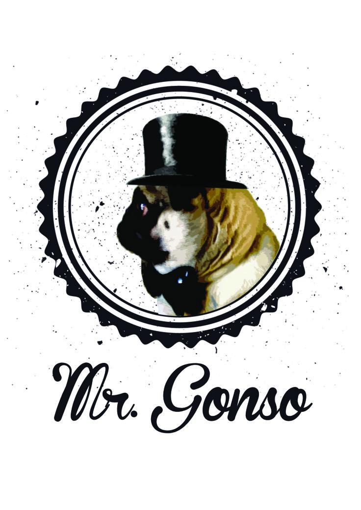 Diseño gráfico para camiseta sobre mi mascota. Gonso!