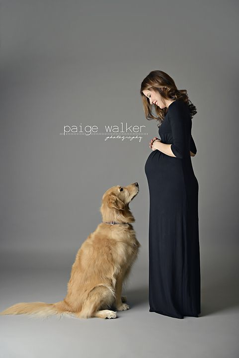 maternity photo session with dog, maternity and dog pose, maternity posing ideas with animals