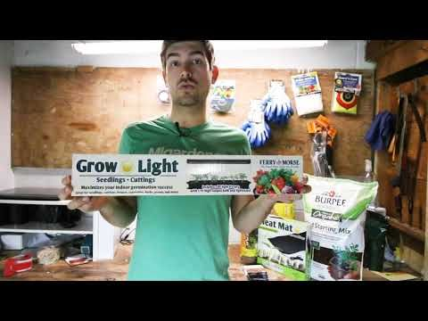 73 The Beginner S Kit To Mastering Seed Starting Grow 400 x 300