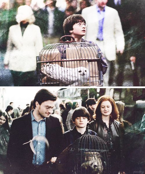 Harry Potter's first day + his son's first day on the Hogwarts Express