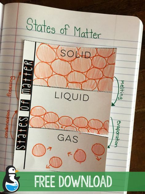 States of Matter Fold-up: free download