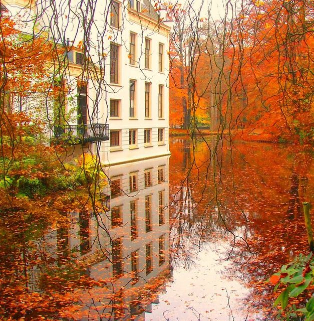 Staverden Castle / Netherlands: Fall Leaves, Fall Pictures, Autumn Leaves, Color, I Love Fall, The Netherlands, Mirror Image, Beautiful Things, Fall Weather