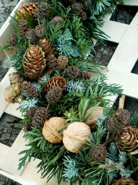 Pine and nuts on wreath