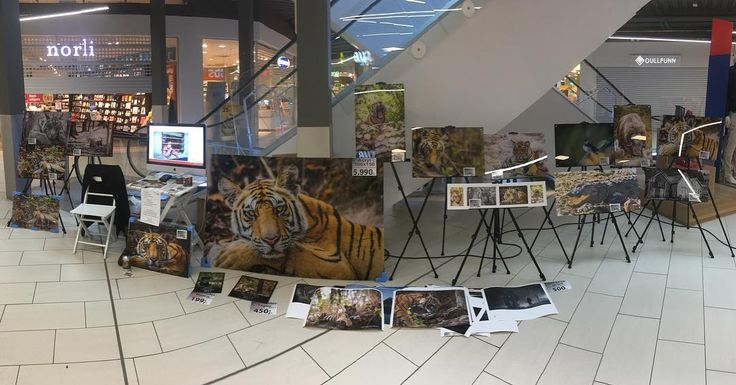 My exhibition in Buskerud Storsenter is now open