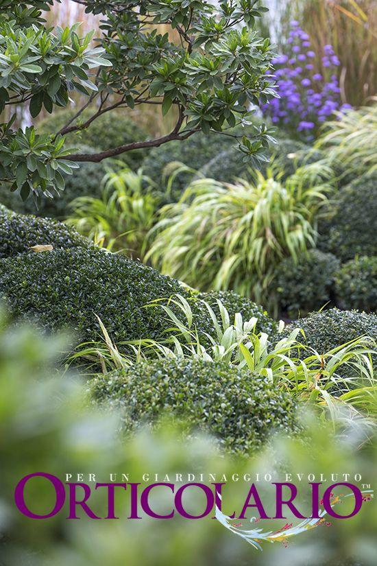 Nel Parco... con Minari Buxus | Buxus Grower & Garden Designer . Illuminazione: Architetto Michela Viola | Lighting Designer . Fotografia di Dario Fusaro. Scattata durante e per Orticolario 2015