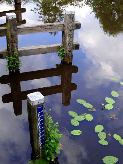 Nieuw in mijn Werk aan de Muur shop: Weerspiegeling in water. Reflection in water.
