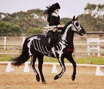 Inspiring picture halloween, costume, horse, skeleton. Resolution: 500x333. Find the picture to your taste!