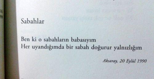 * Aziz Nesin