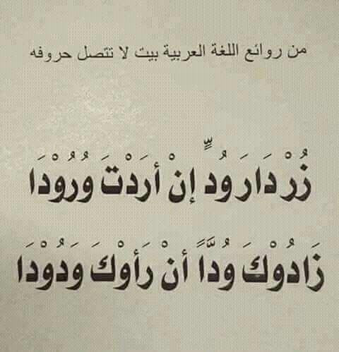بيت شعر لا تتصل حروفه Language Quotes Funny Arabic Quotes Love Smile Quotes
