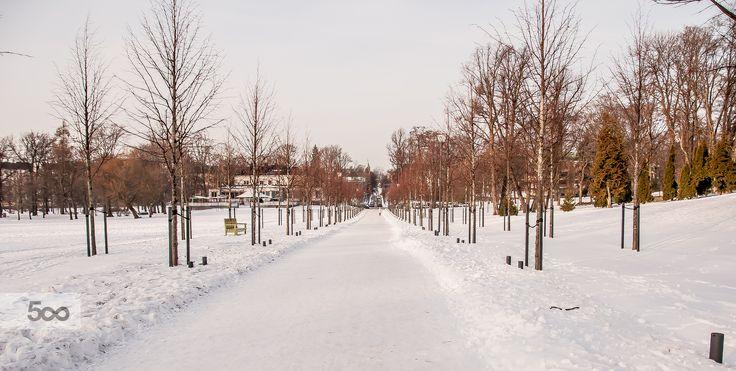 Helsinki's winter by Graziella Serra Art & Photo on 500px