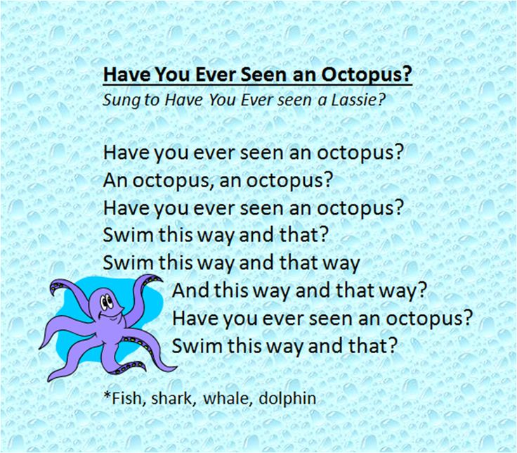 Have You Ever Seen Ocean Animal Song With Images Ocean Theme
