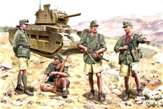 captured Matilda II in North Africa