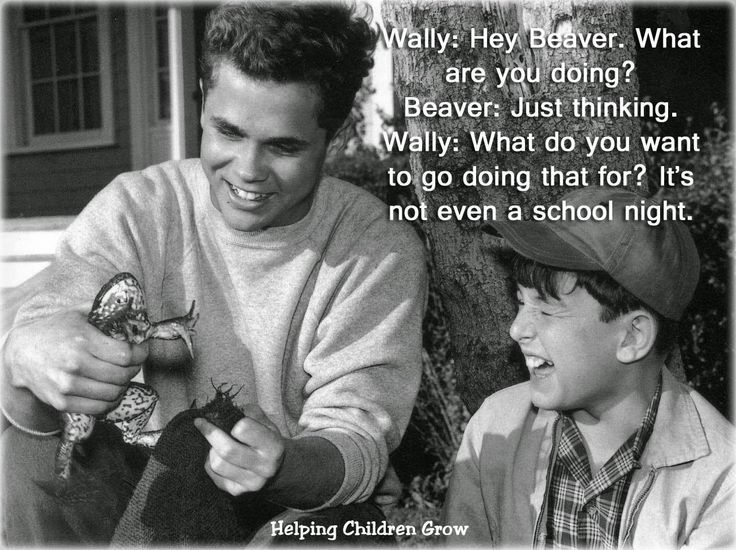 leave it to beaver essay Directed by norman tokar with barbara billingsley, hugh beaumont, tony dow, jerry mathers beaver has to write a school paper about the most interesting character he has ever met he decides to make it about ward, but.