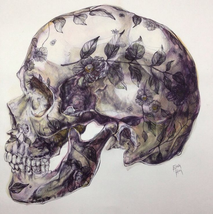 Emily Hay - floral skull drawing.  Awesome artwork.