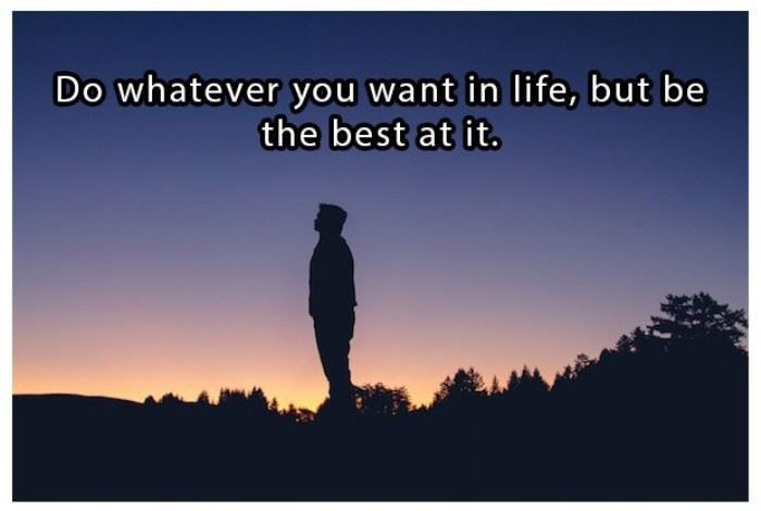 Do what you want in life, but be the best at it | www.piclectica.com #piclectica