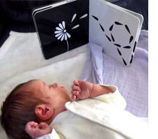Newborns love looking at black and white images. Mesmerised board book by Katey Love is the perfect gift for a new baby.