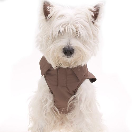 all-weather-dog-coat-brown2