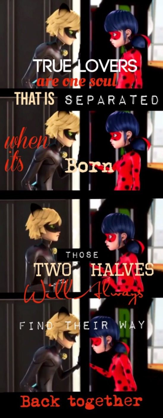 True Lovers, Miraculous Ladybug                                                                                                                                                                                 More