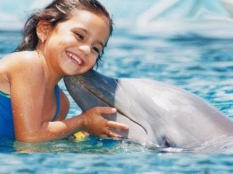 Swim with dolphins in Cancun (Isla mujeres)