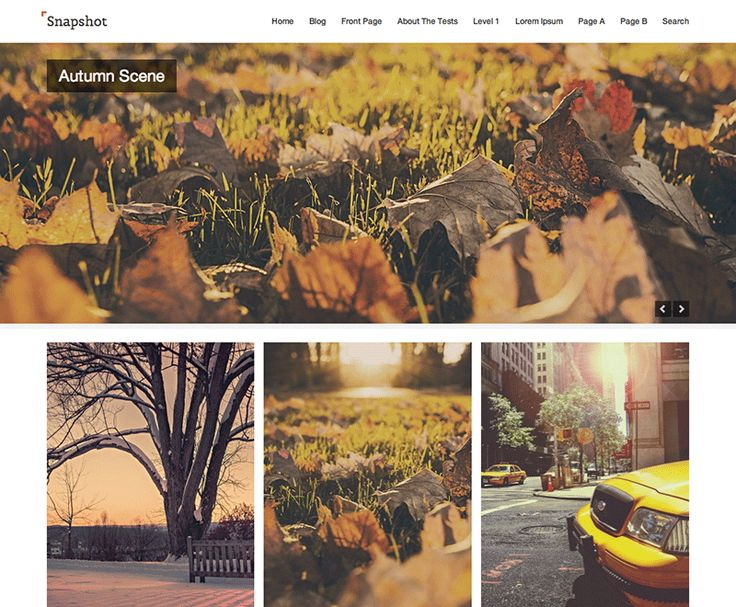 Snapshot — Free WordPress Themes