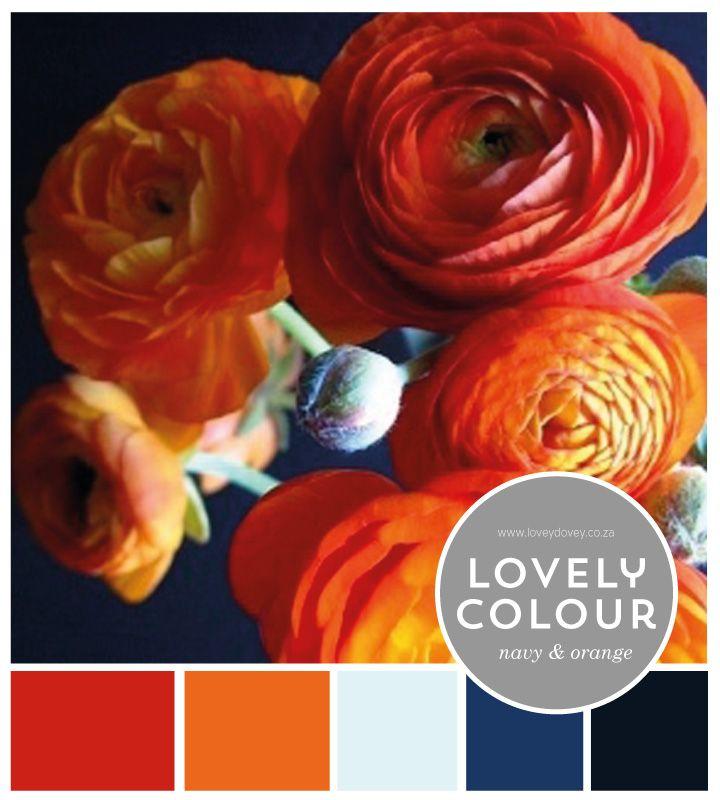 Lovey Dovey | Orange and Navy