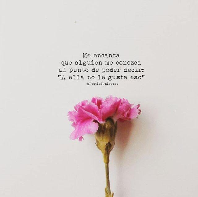 Y Que Sea Verdad Frases De Amor Frases Bonitas Y Frases