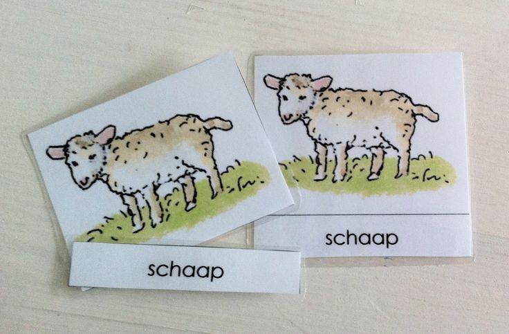 Activiteiten met woordkaarten